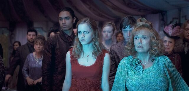 File:Harry-potter-and-the-deathly-hallows-part-i-20100922043334092.jpg