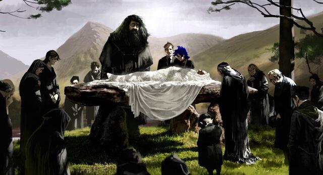 File:Dumbledore funeral.jpg