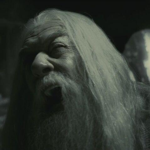 File:Dumbledore grief.jpg