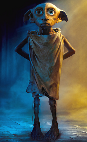 File:Dobby Full CoS.png