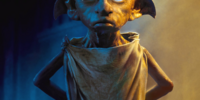 House-elf