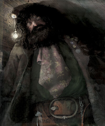 File:Jim Kay Rubeus Hagrid Illustration.jpg