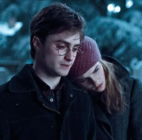 File:Hermione, Harry (0).jpeg