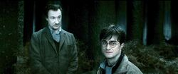 Harry-potter7-harry lupin