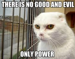 File:Voldemort cat.jpg