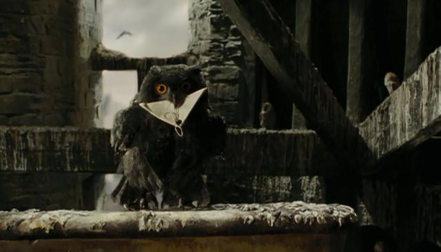 File:Black owl.png