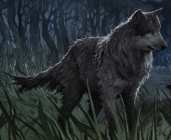 how to draw sirius black dog form
