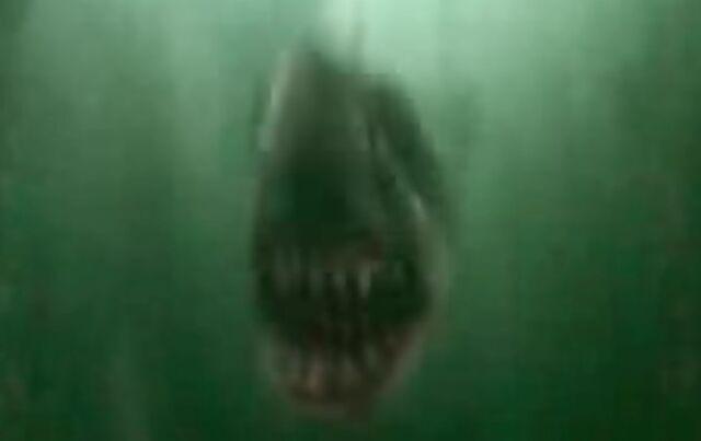 File:Krum Shark.jpg
