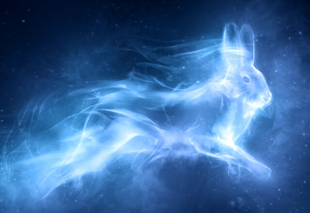 File:Patronus Hare.jpg