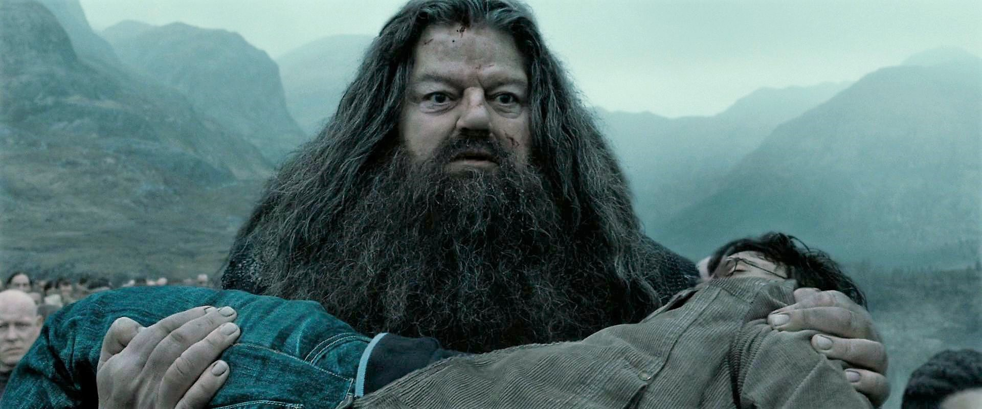 Bestand:Hagrid carrying Harry.jpg