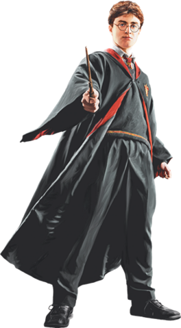 File:Harry in Robe with Wand Front View (Painting) - Harry Potter and the Half-Blood Prince™.png