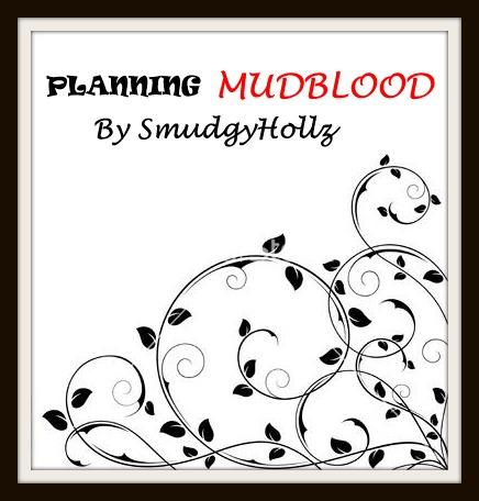 Mudblood planning 2