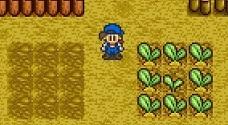 Planting 3x3 snes