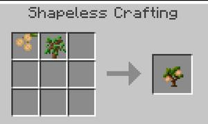 Walnut Sapling 1.7.10