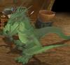 Claw Dragon