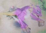 RF4 Pink Dragon