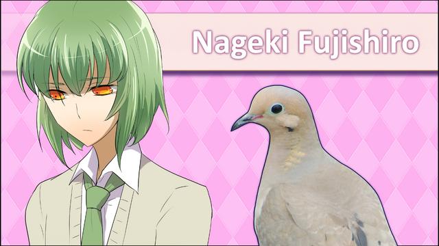 File:NagekiFujishiroRemakeICPSS.png