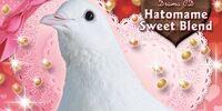 Hatomame Sweet Blend