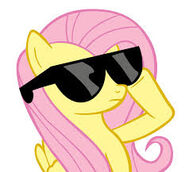 Flutters with sunglasses