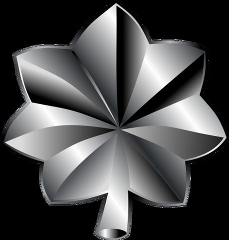 File:Lieutenant Colonel.png