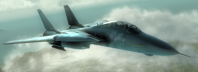 File:F-14D SuperTomcat.png