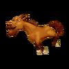 Bay Horse Running