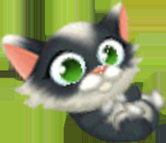 File:Tuxedo Kitten Playful.png