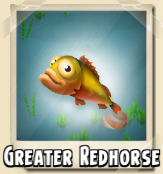 File:Greater Redhorse Photo.png