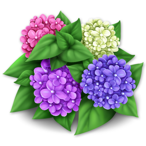 File:Purple Hydrangeas.png