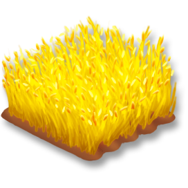 File:Wheat Stage 4.png