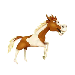 File:Pinto Horse Running.png