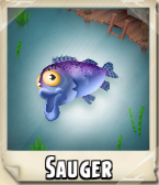 File:Sauger Photo.png