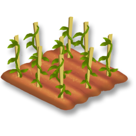 File:Tomato Stage 2.png