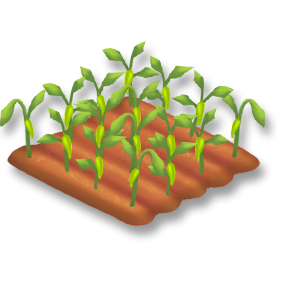File:Chili Pepper Stage 3.png