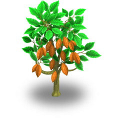 File:Cacao Tree.png