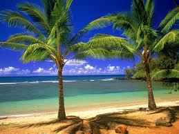 File:Hawaii5.jpg