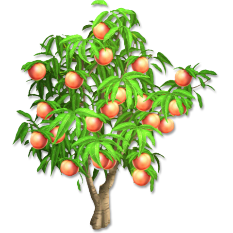 File:Peach Tree.png