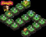 HMNM-Jungle-1-3
