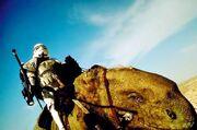 Stormtrooper on Dewback
