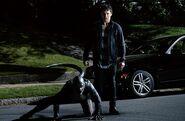 Teen Wolf 2x09 008