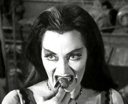 Lily Munster 004