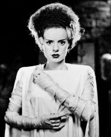 Bride of Frankenstein (Universal Classics) 001