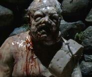 Walking Dead 2x04 002