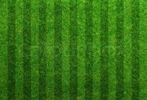 9093811-green-grass-soccer-field-background