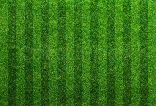 File:9093811-green-grass-soccer-field-background.jpg
