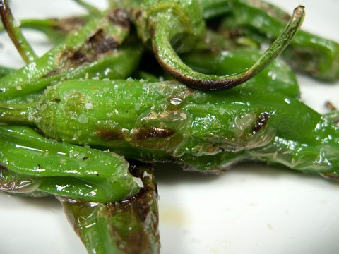 File:Grilled-shishito-pepper.jpg