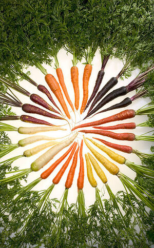 Carrots of all colors