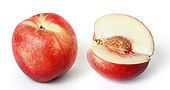 170px-White nectarine and cross section02 edit