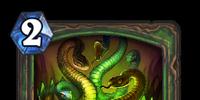 Snake Trap
