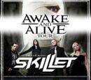 Awake and Alive Tour